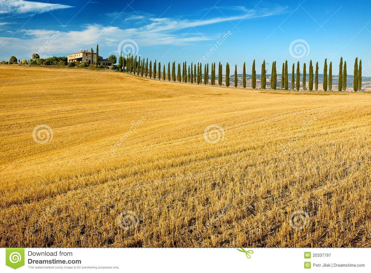 Belvedere Of Tuscany Stock Image Image Of Road Scene