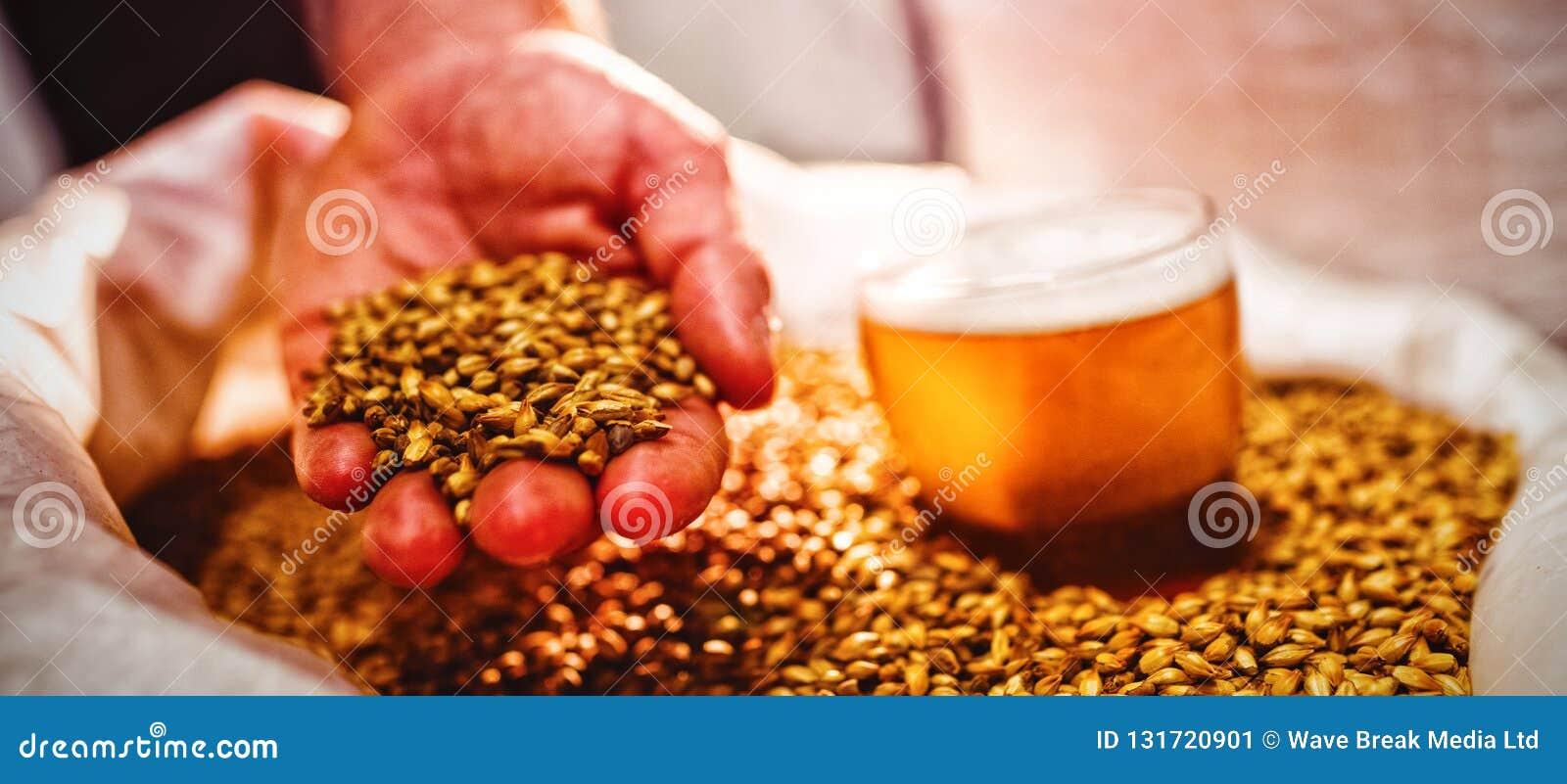 Bemannen Sie das Halten der Gerste durch Bierglas im Sack an der Brauerei