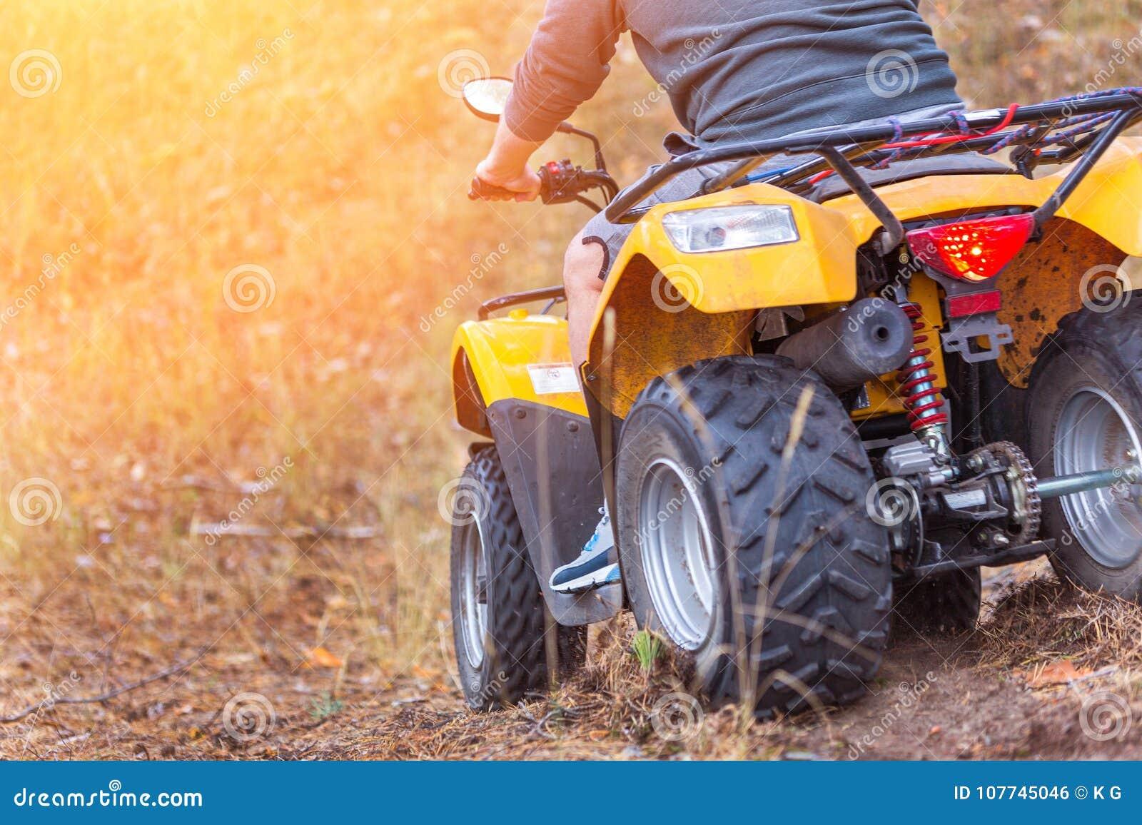 Bemannen Sie das Reiten eines ATV-quadbike in einem schönen Herbstkiefern-Waldesprit
