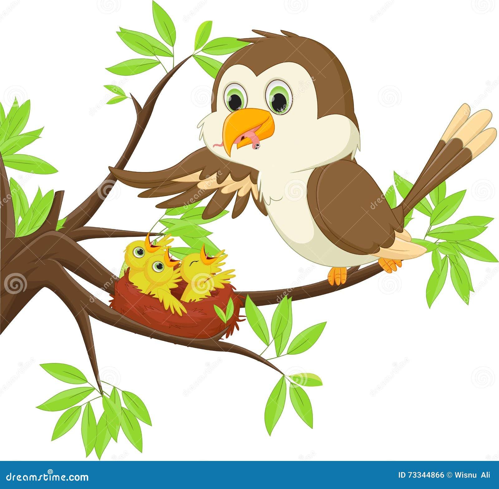 Bemuttern Sie den Vogel, der ihrem Sohn im Nest einen Wurm einzieht