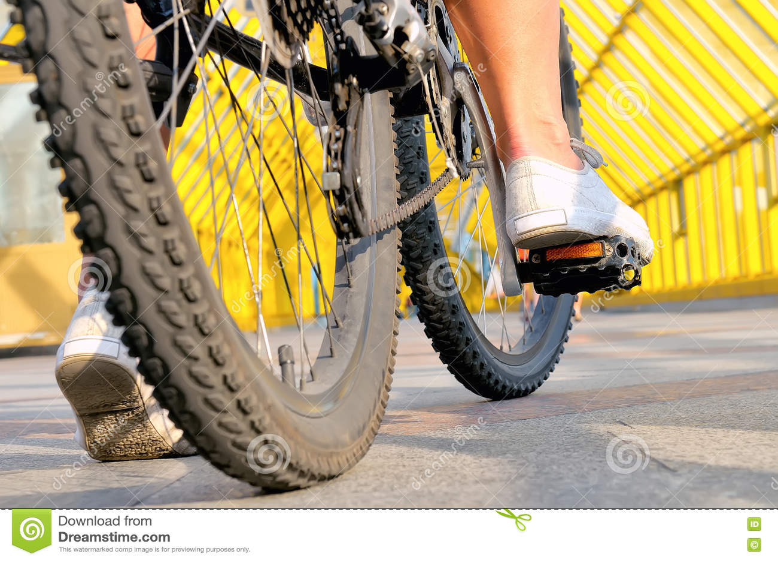 Ben av flickasammanträdet vid bakre sikt för cykel