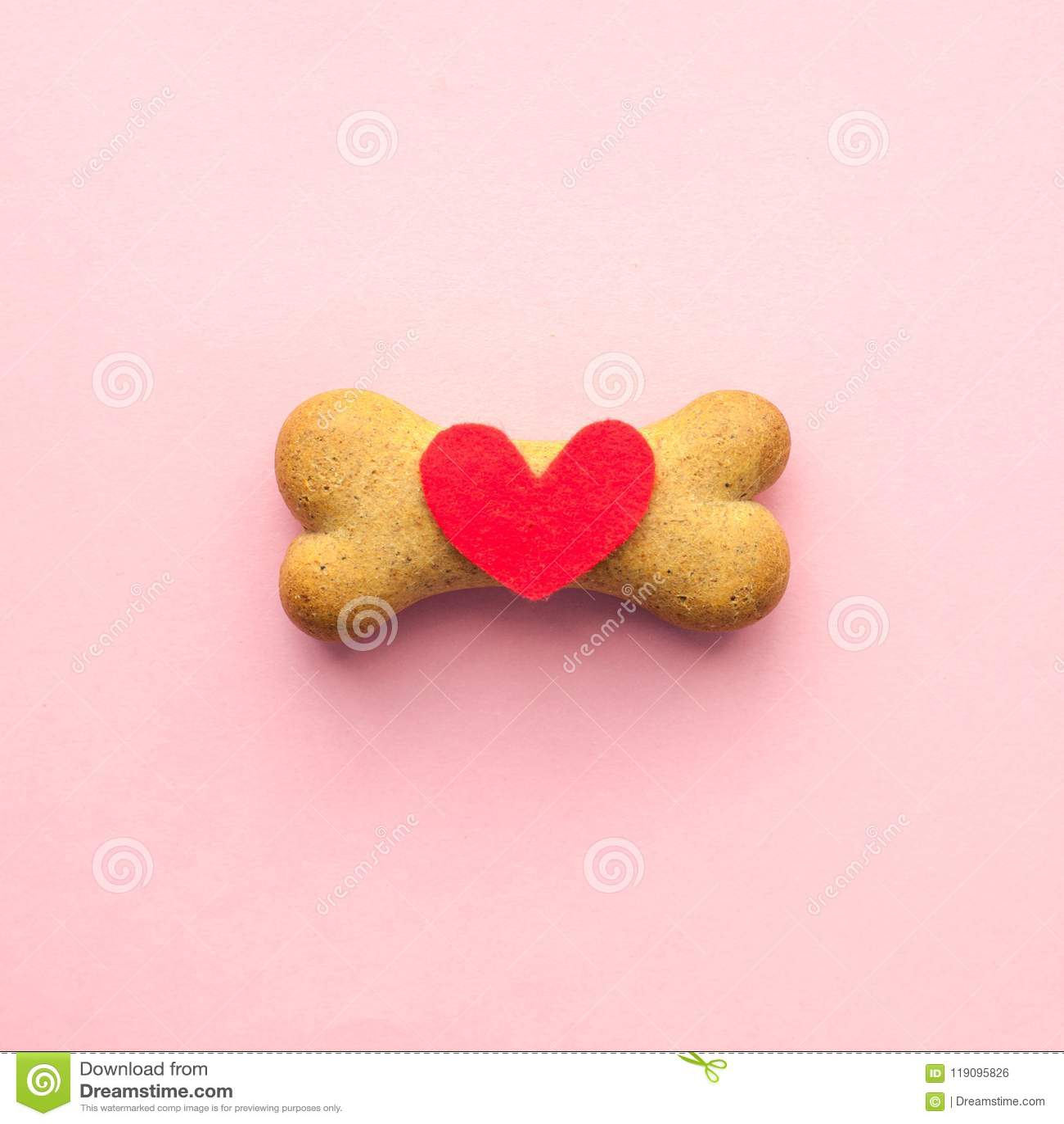 Ben-format kex för hund och röd hjärta på rosa bakgrund, älsklings- omsorg för begrepp