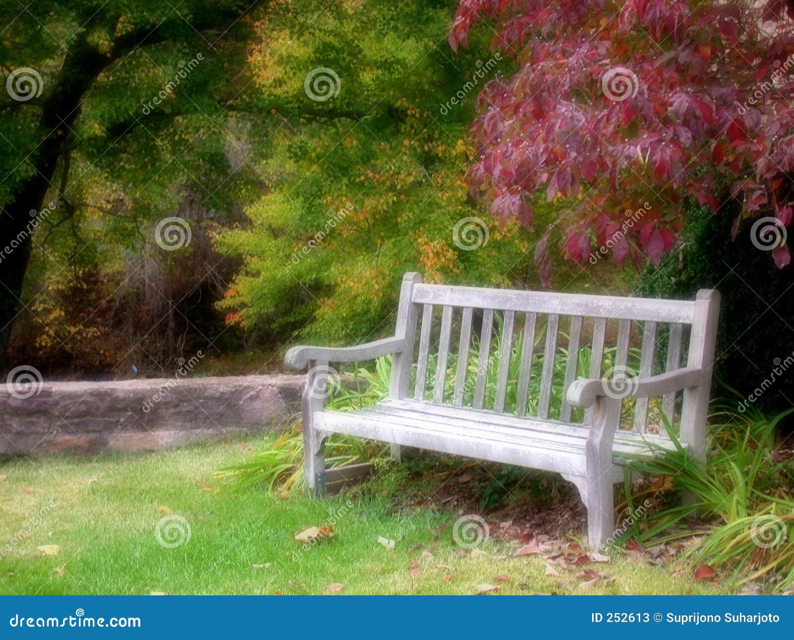 Bench парк