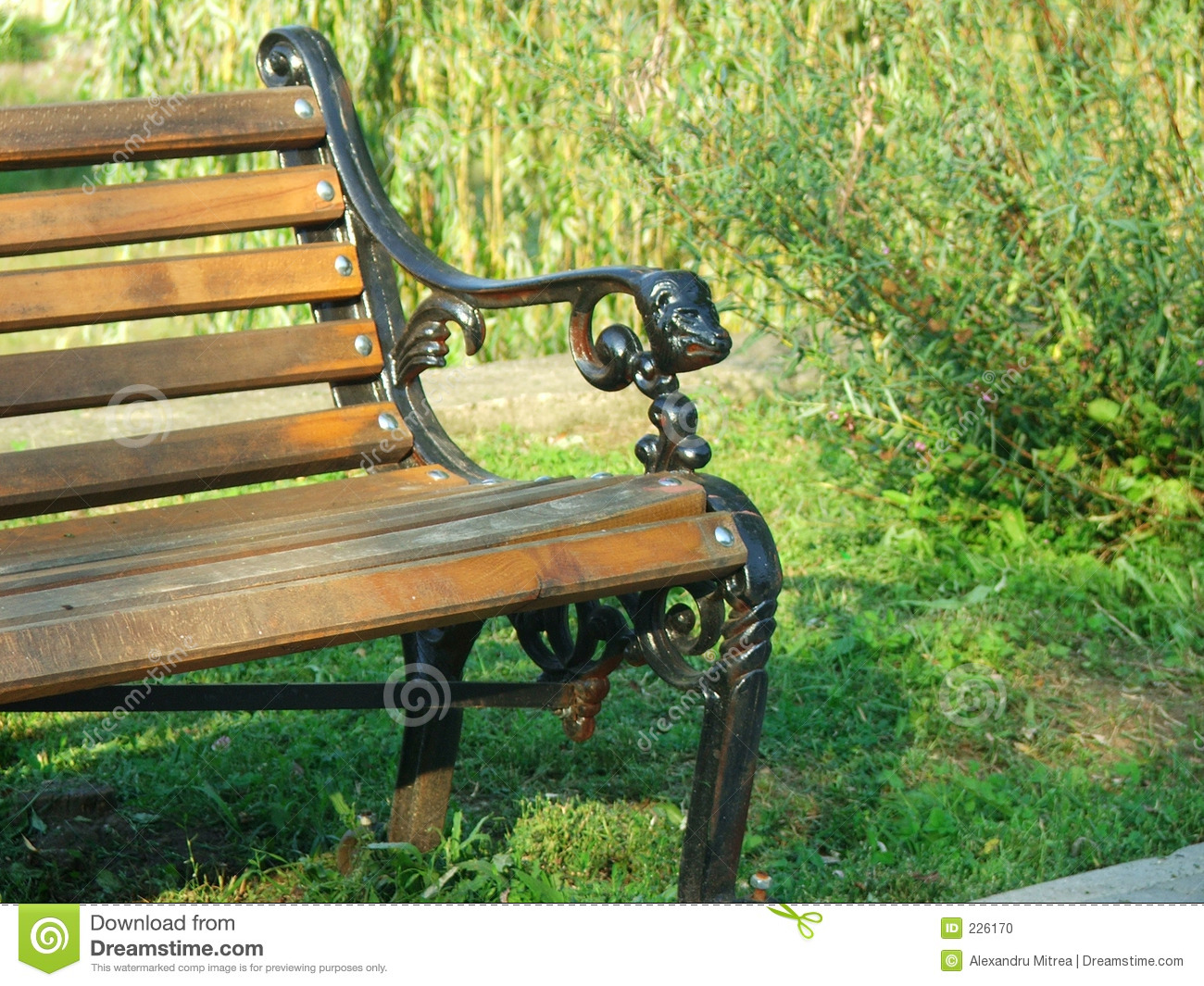 Download Bench stock photo. Image of plants, bench, park, wood, woods - 226170