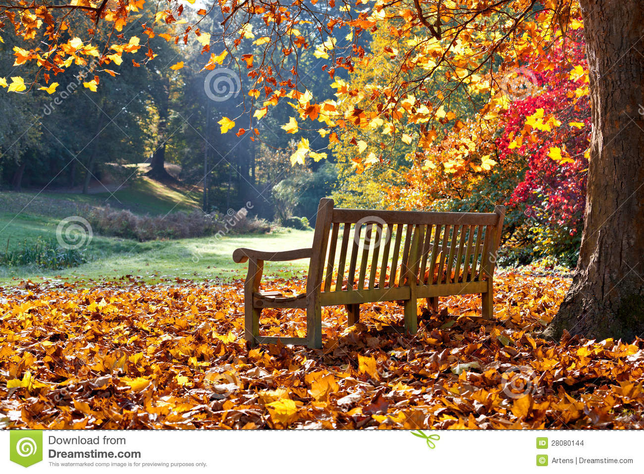 Bench In Autumn Park. Stock Images - Image: 28080144