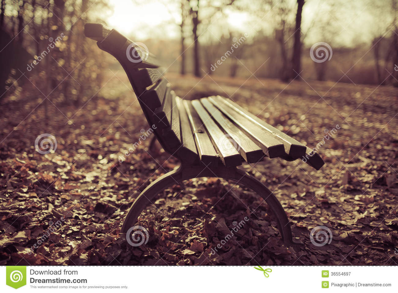 Bench Autumn Scene Royalty Free Stock Photography - Image ...