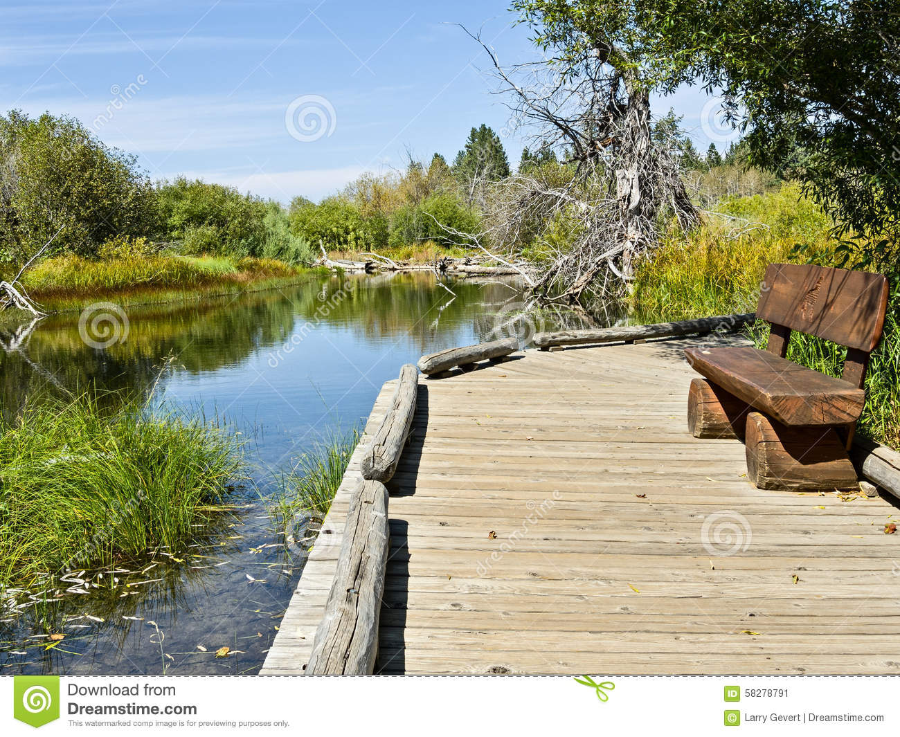Bench and boardwalk