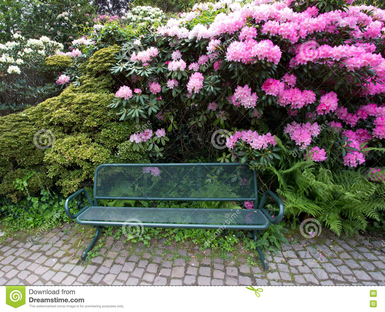 Bench in front of plants and flowers stock image image of natural bench in front of plants and flowers izmirmasajfo