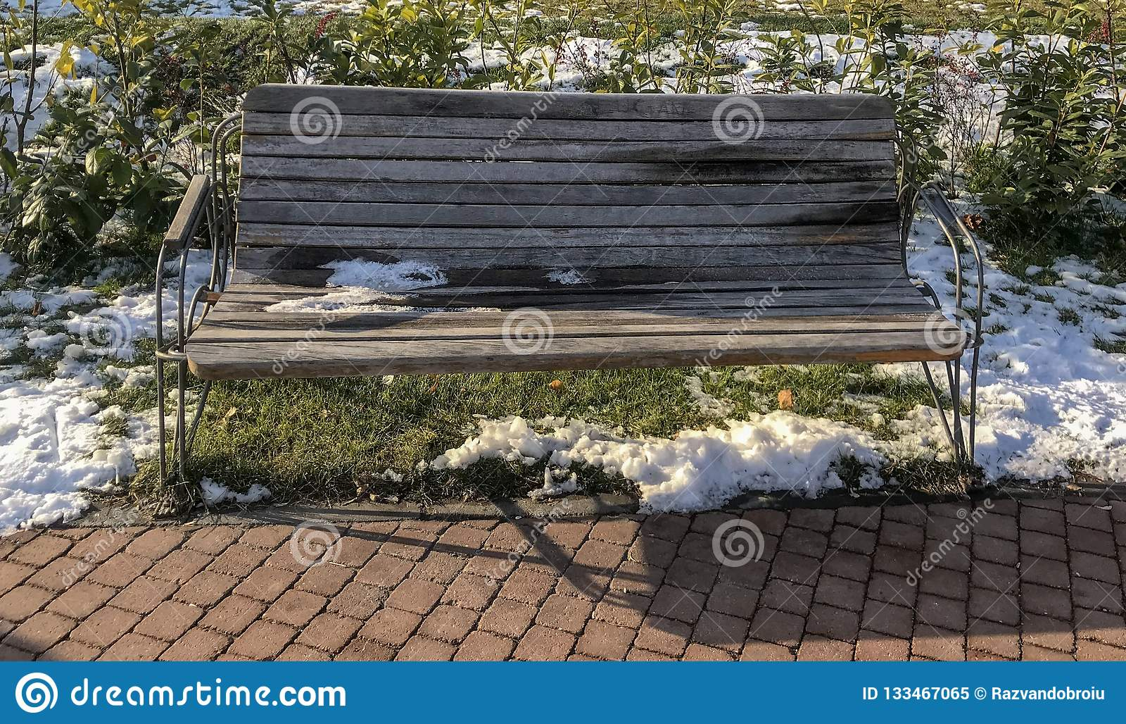 Bench in the IOR park from Bucharest, Romania