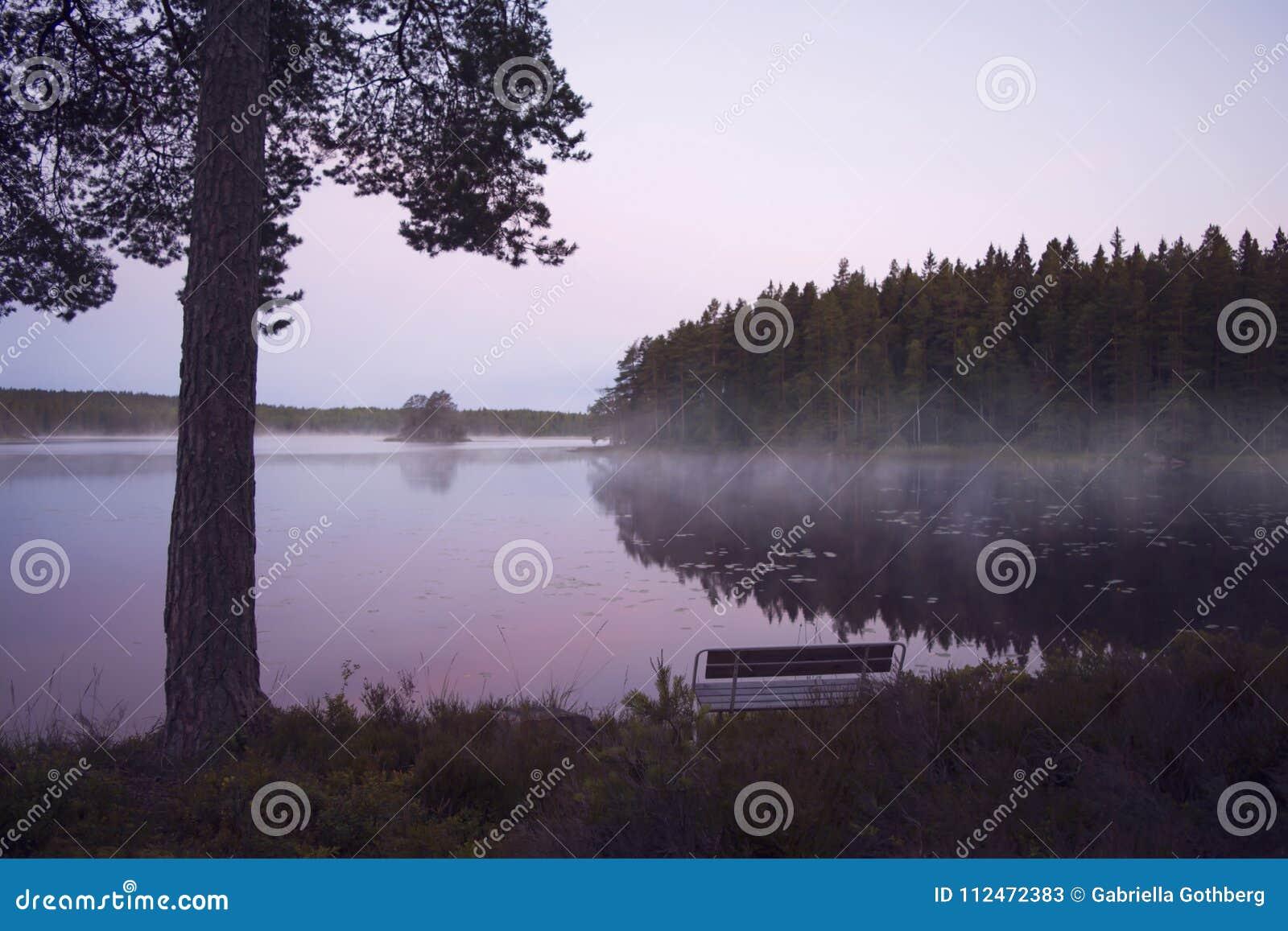 Bench by misty lake in beautiful sunrise.