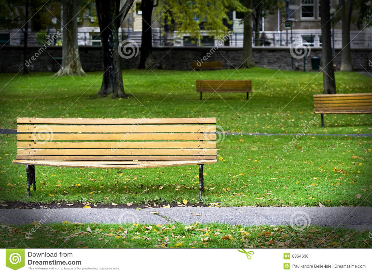 Bench park stock photo. Image of fall, leaf, daylight - 6864636 for Park Background With Bench  61obs