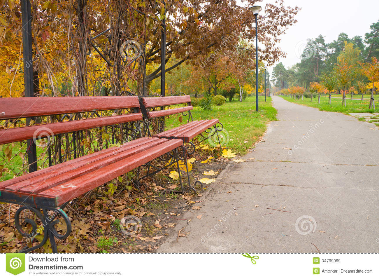Bench in the park stock image. Image of plants, lush - 34799069 for Park Background With Bench  70ref