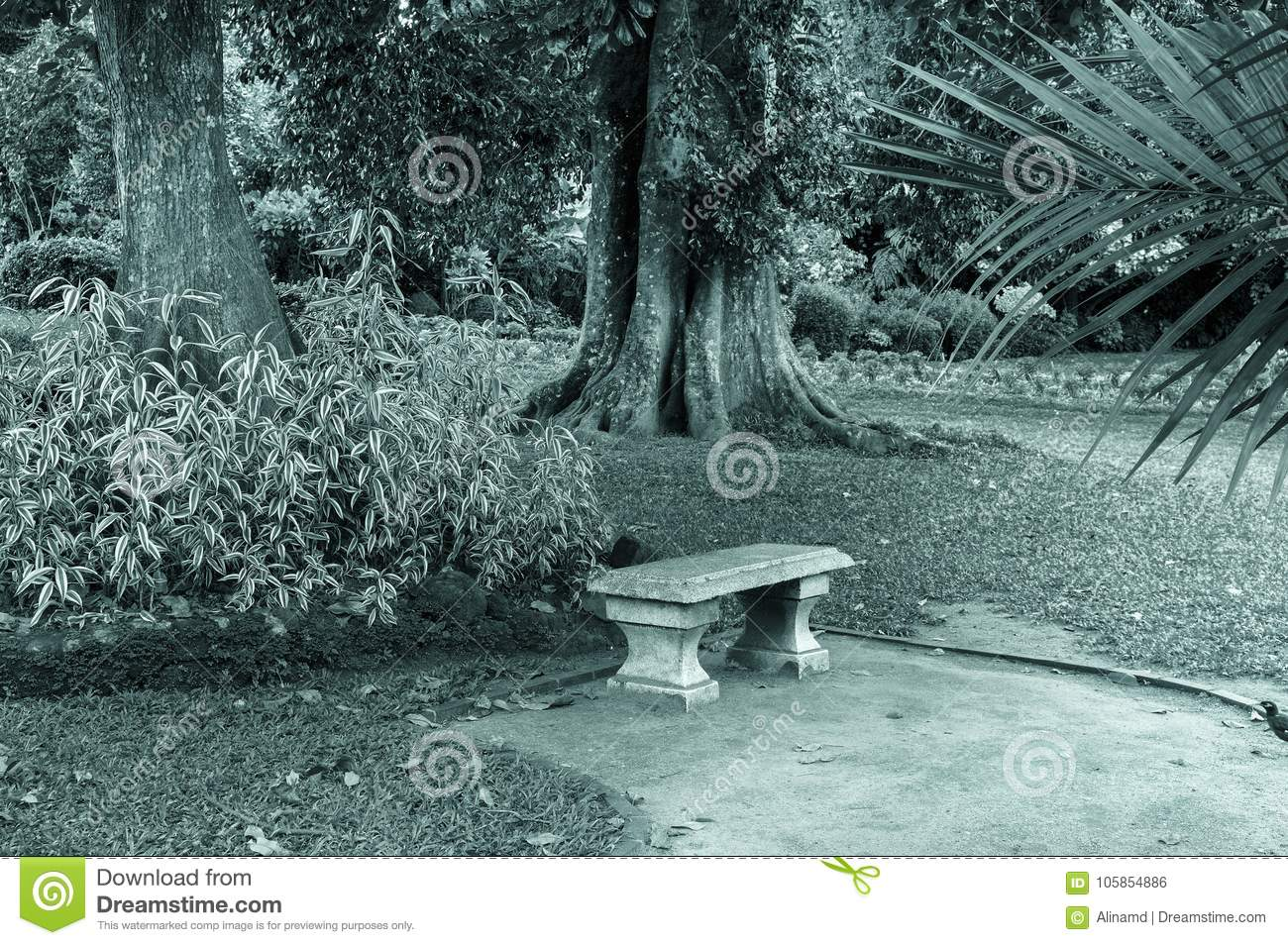Bench Photo In Old Vintage Image Style Stock Photo Image Of