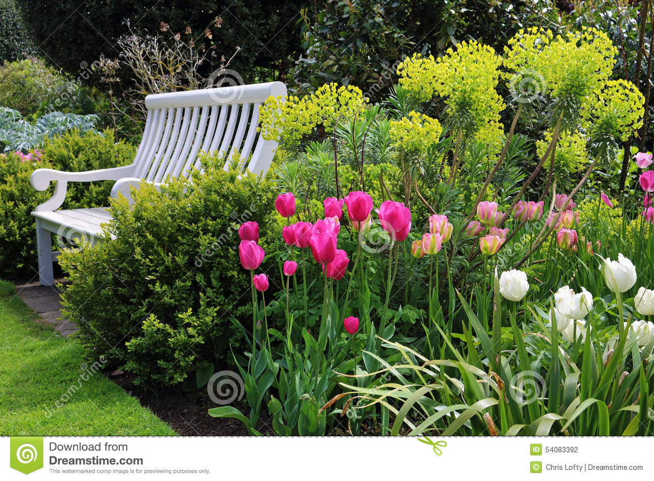 Bench Seat In An English Garden In Early Summer Stock Photo