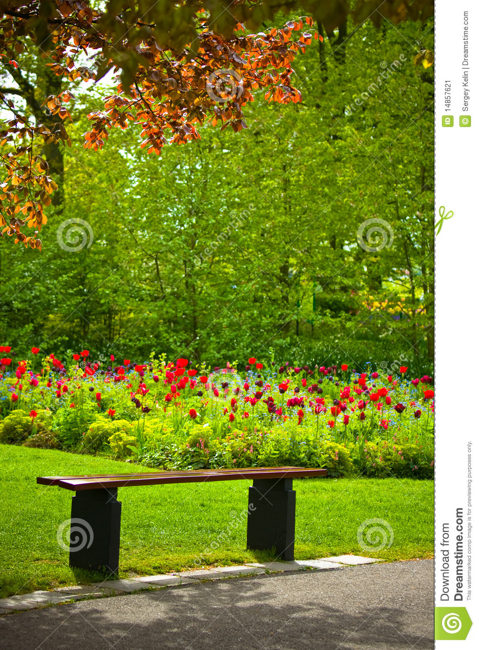 Bench under a tree with flowers in a park