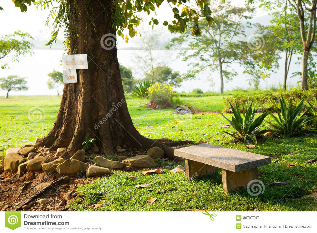 Bench Under A Tree. Royalty Free Stock Photography - Image ...