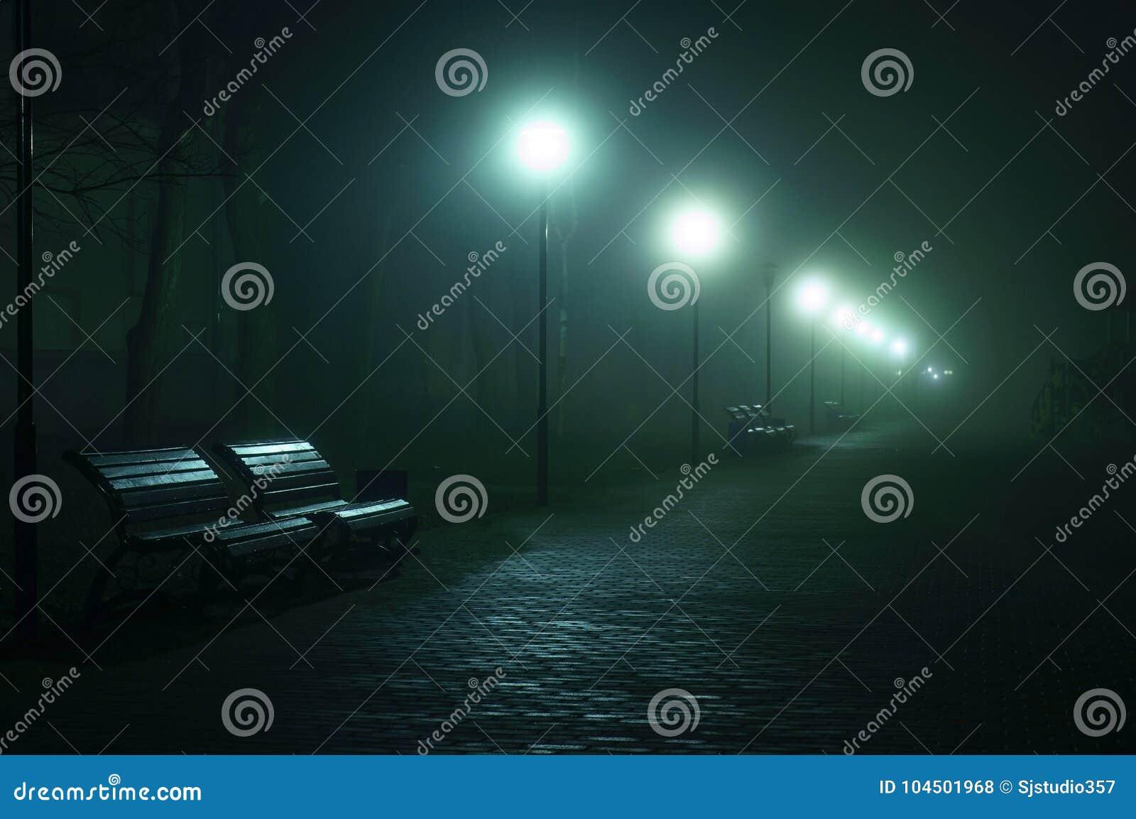 Benchs vazios no bulevar da cidade, avenida Aleia na rua nevoenta na noite