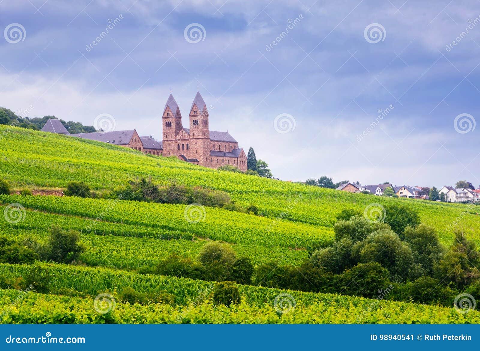 Vineyard of Eibingen Abbey