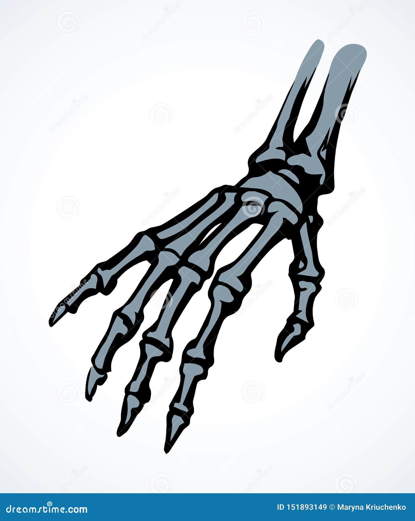 Benen av handen bakgrund som tecknar den blom- gr?svektorn