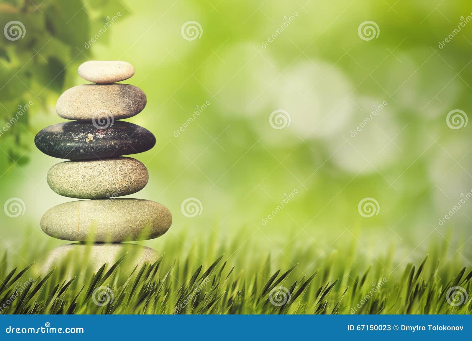 Benessere Salute E Concetto Naturale Di Armonia Immagine Stock Immagine Di Erba Aperto 67150023