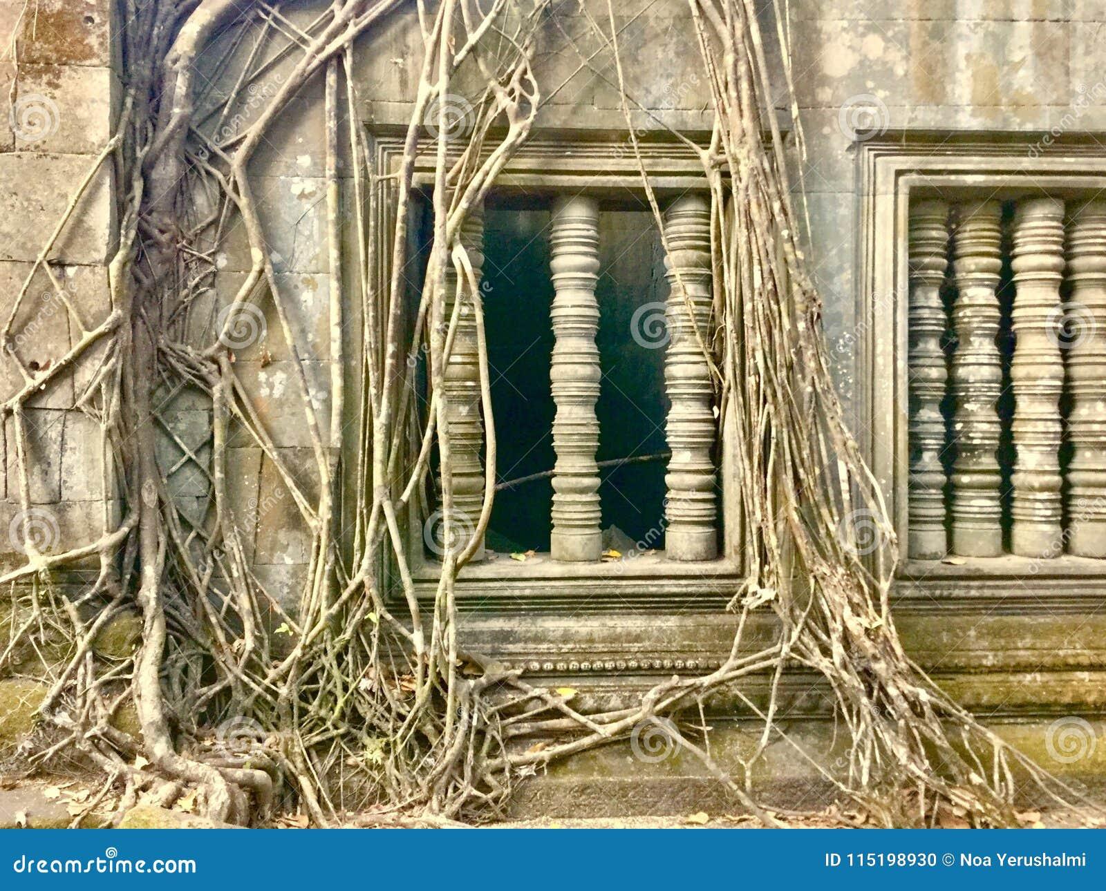 Beng Mealea -吴哥寺庙,柬埔寨