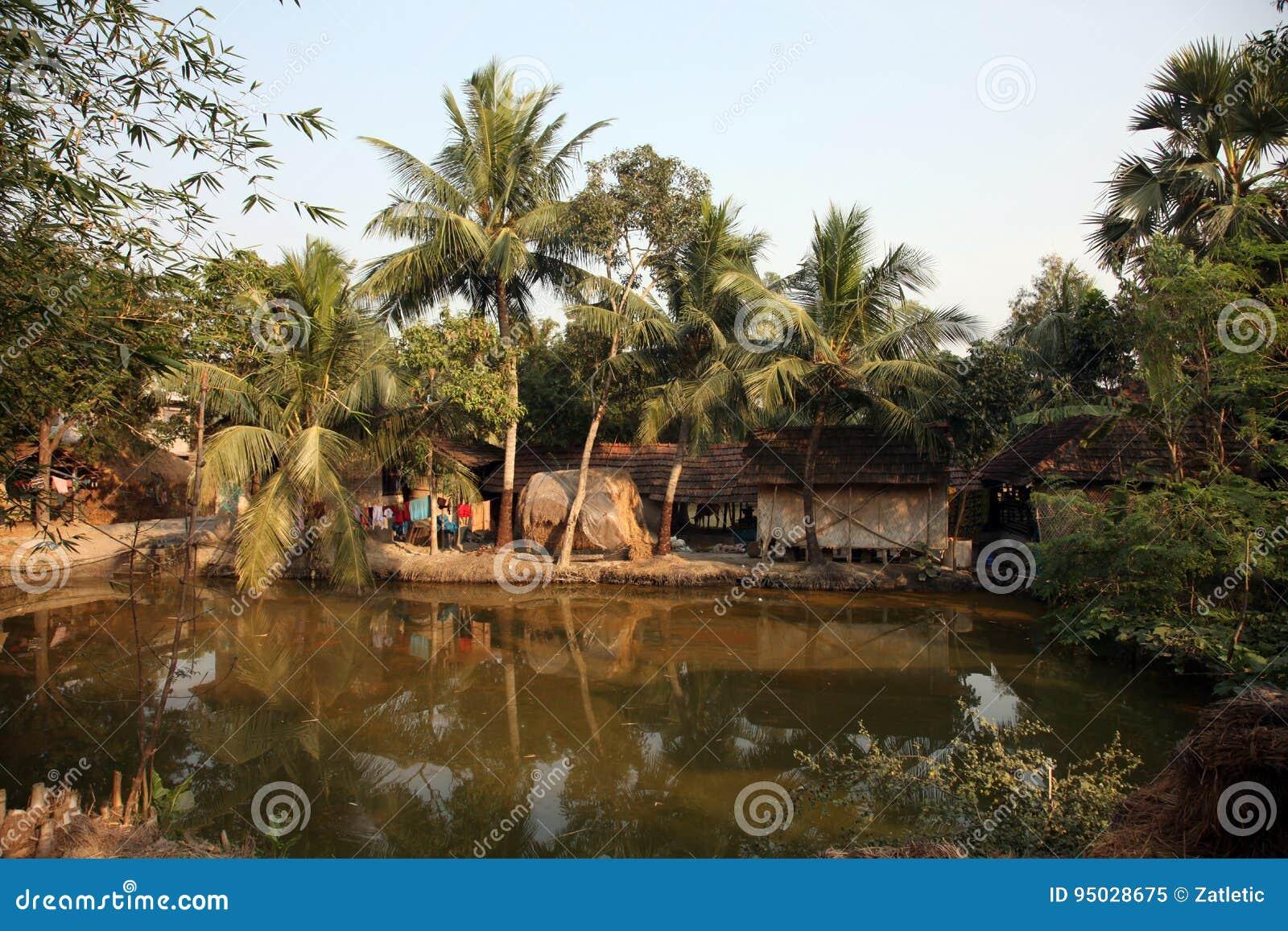 Bengali village stock image  Image of hindu, ganga, bengal