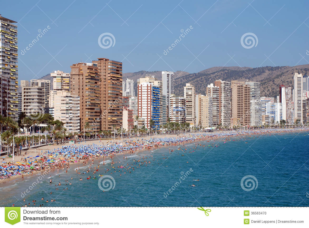 Benidorm - Costa Blanca Spain  city pictures gallery : The city Benidorm on the Costa Blanca Spain .