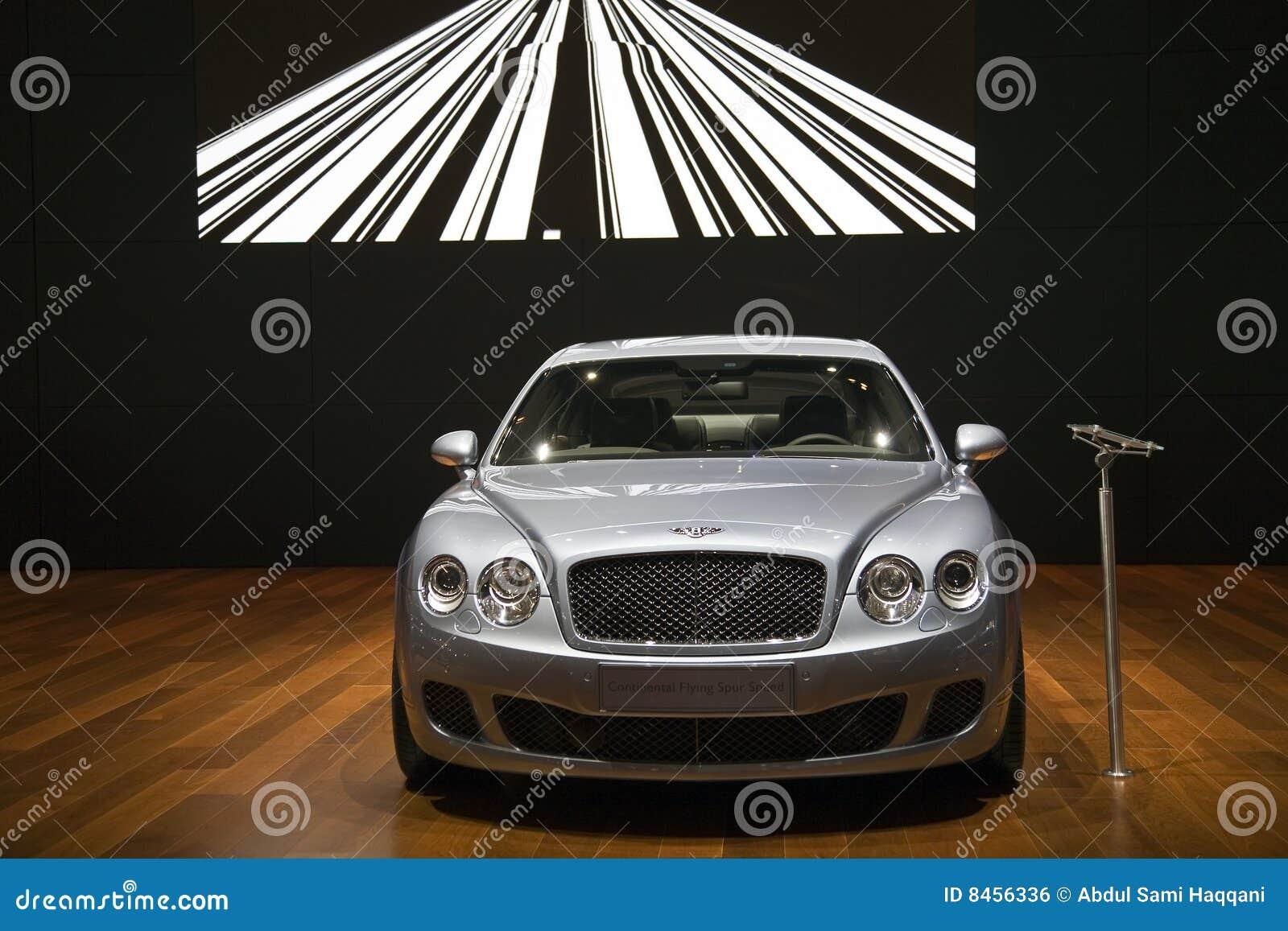 Bentley kontinentaler Flugwesen-Sporn