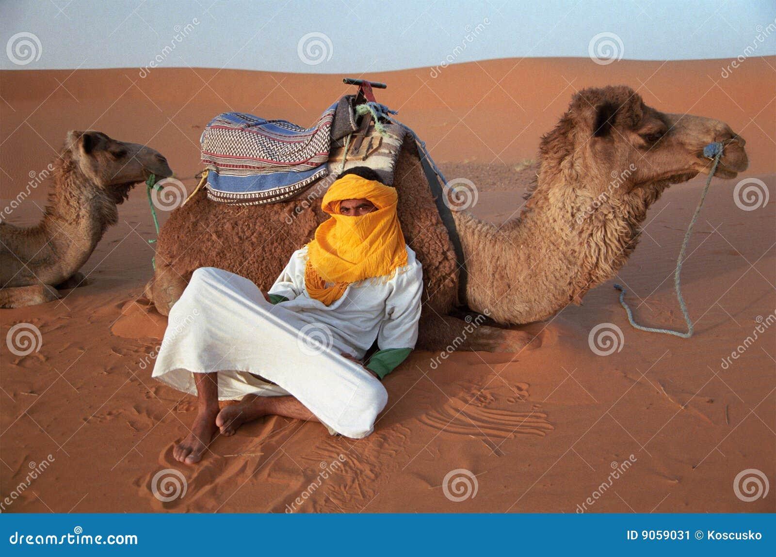 Berber guide rests