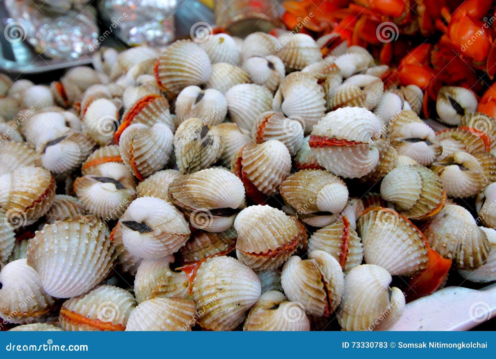 Berberecho un comestible, cavarando el molusco bivalvo con un acanalado fuerte
