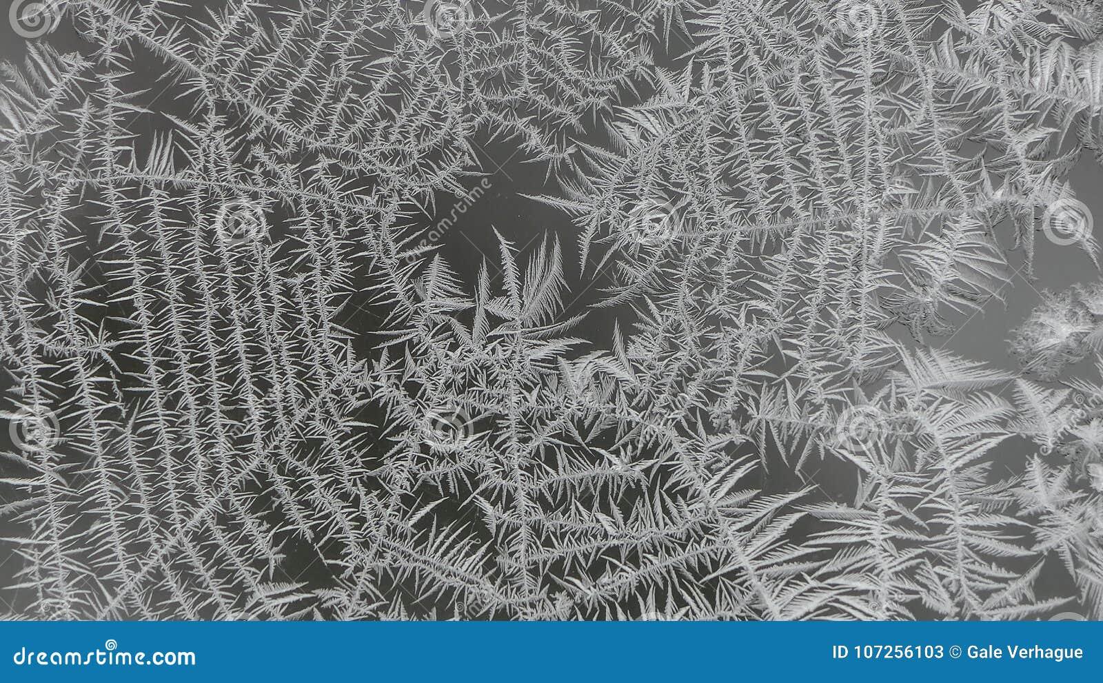Bereiftes Spinnen-Netz auf einem Fenster