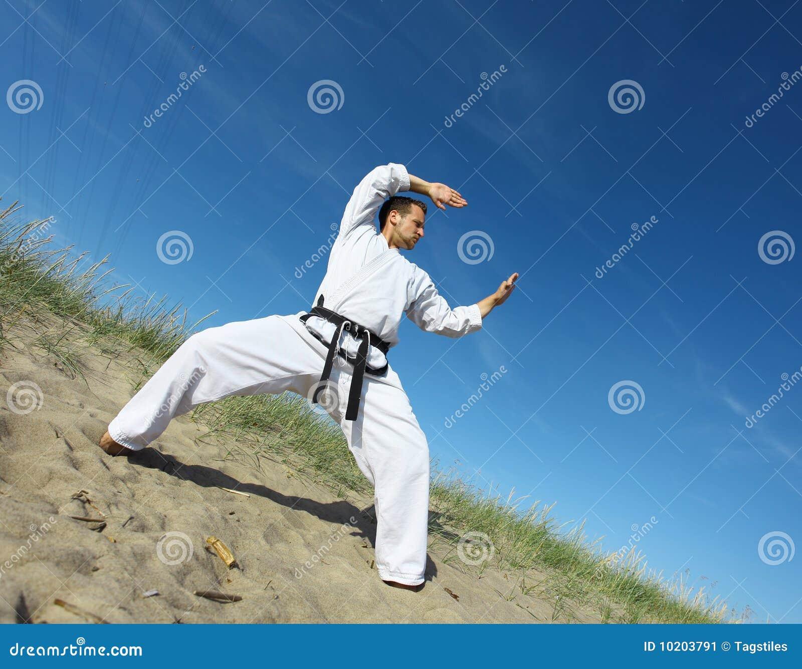 Download Bereiten Sie Vor, Um Zu Kämpfen Stockbild - Bild von karate, hintergrund: 10203791