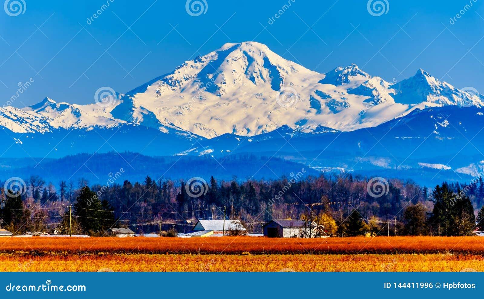 Berg-Bäcker, ein schlafender Vulkan in Washington State sah von den Blaubeerfeldern von Glen Valley nahe Abbotsford BC, Kanada an