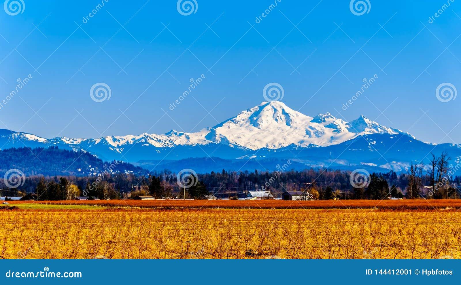 Berg-B?cker, ein schlafender Vulkan in Washington State sah von den Blaubeerfeldern von Glen Valley nahe Abbotsford BC, Kanada an