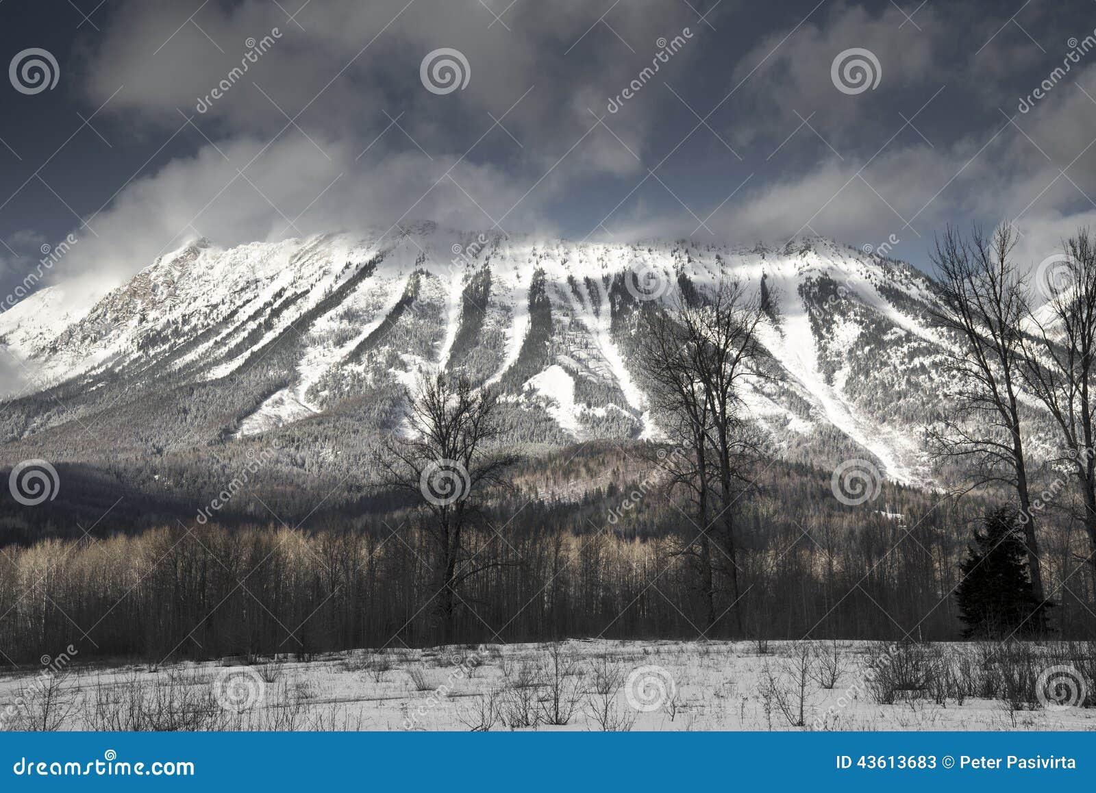 Berg Fernie