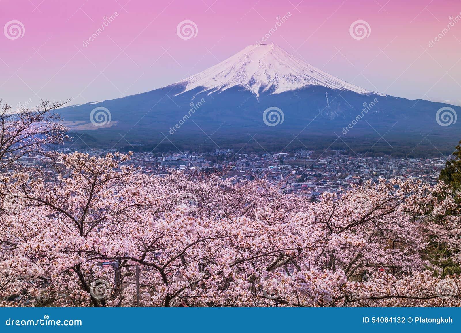 Berg Fuji in de lente, Kersenbloesem Sakura