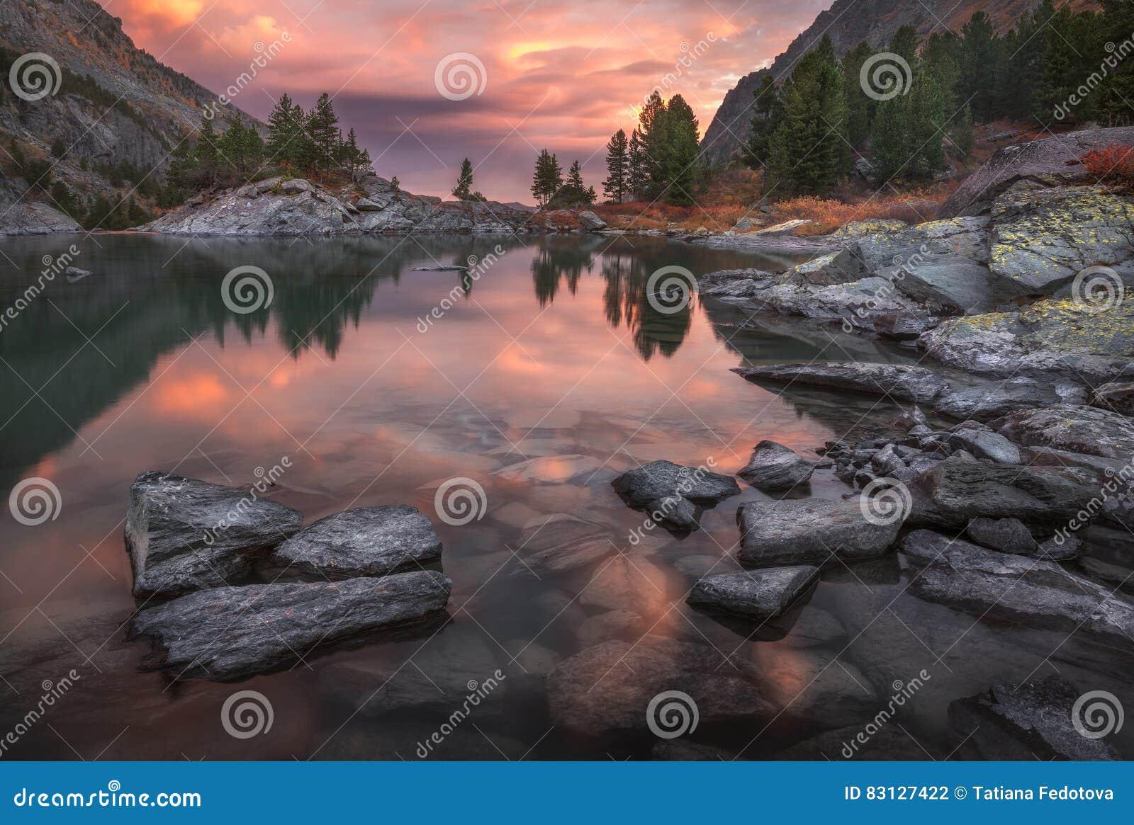 Berg kusten för sjösolnedgången med sörjer Forest And Rocks, den höglands- naturen Autumn Landscape Photo för Altai berg