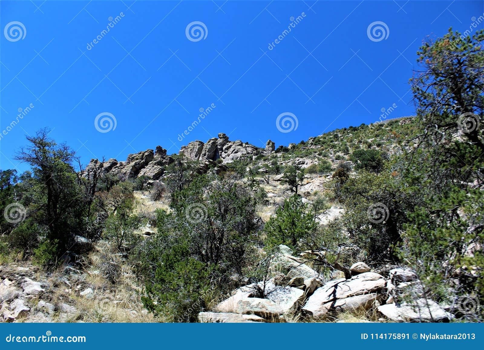 Berg Lemmon, Tucson, Arizona, Vereinigte Staaten