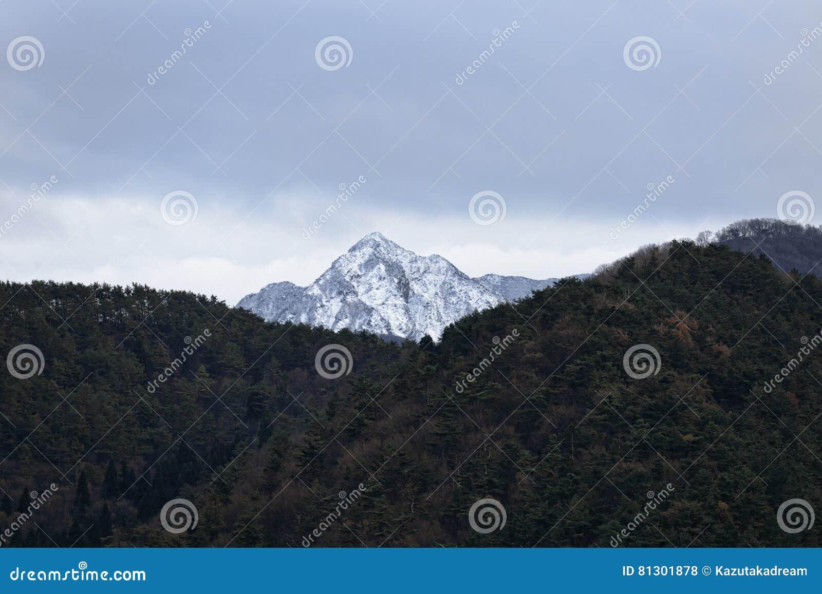 Berg met de sneeuw