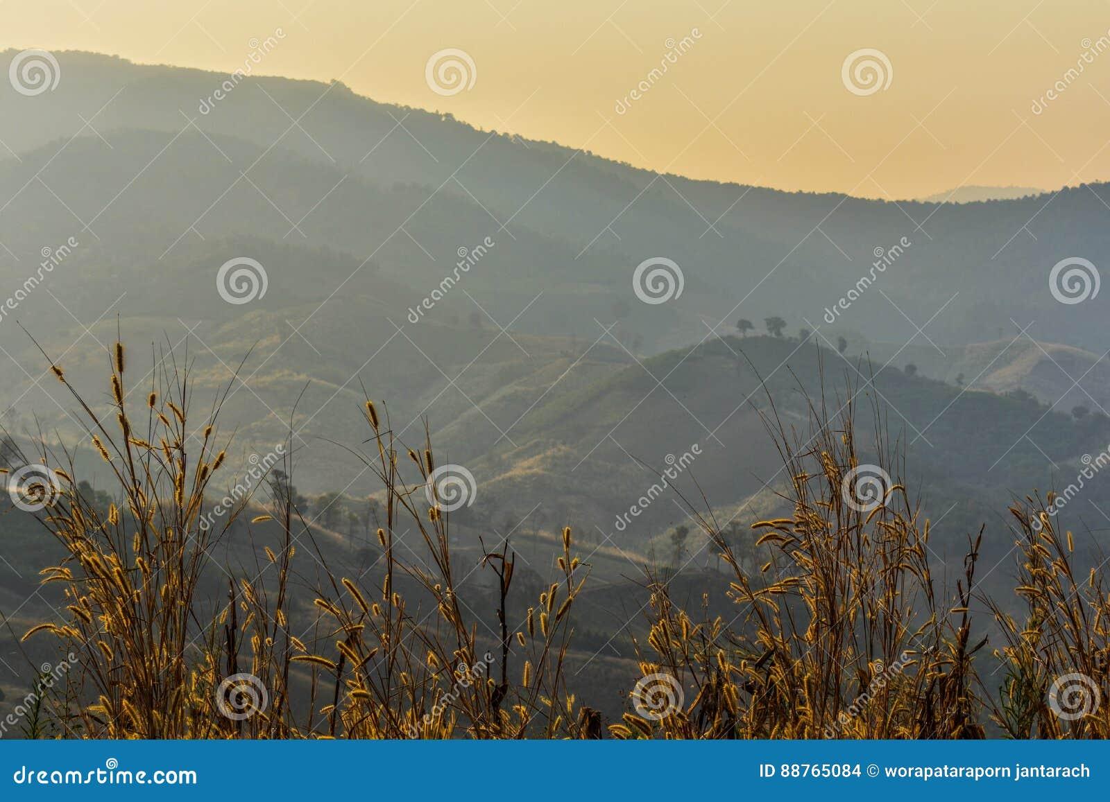 Berg- och sollöneförhöjningar