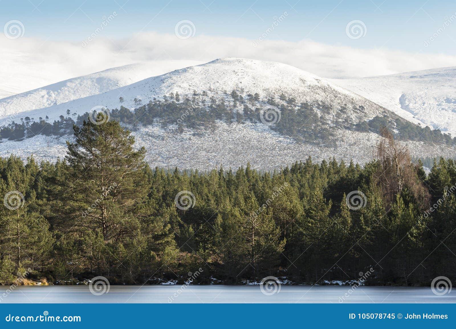 Berg Sgor Gaoithe bei Glen Feshie im Nationalpark Cairngormss von Schottland