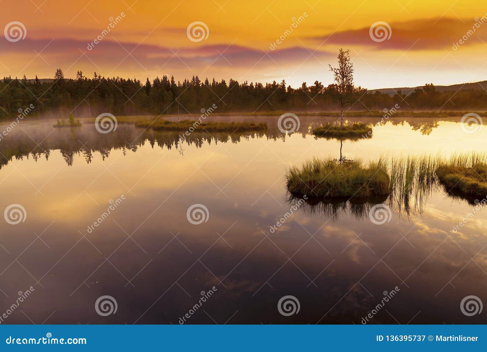Berg sjö Laka i den Sumava nationalparken i Tjeckien