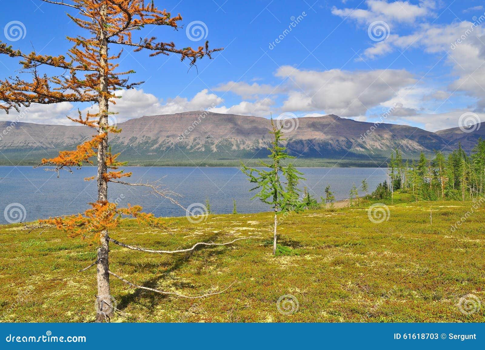 Berg sjö på den Putorana platån