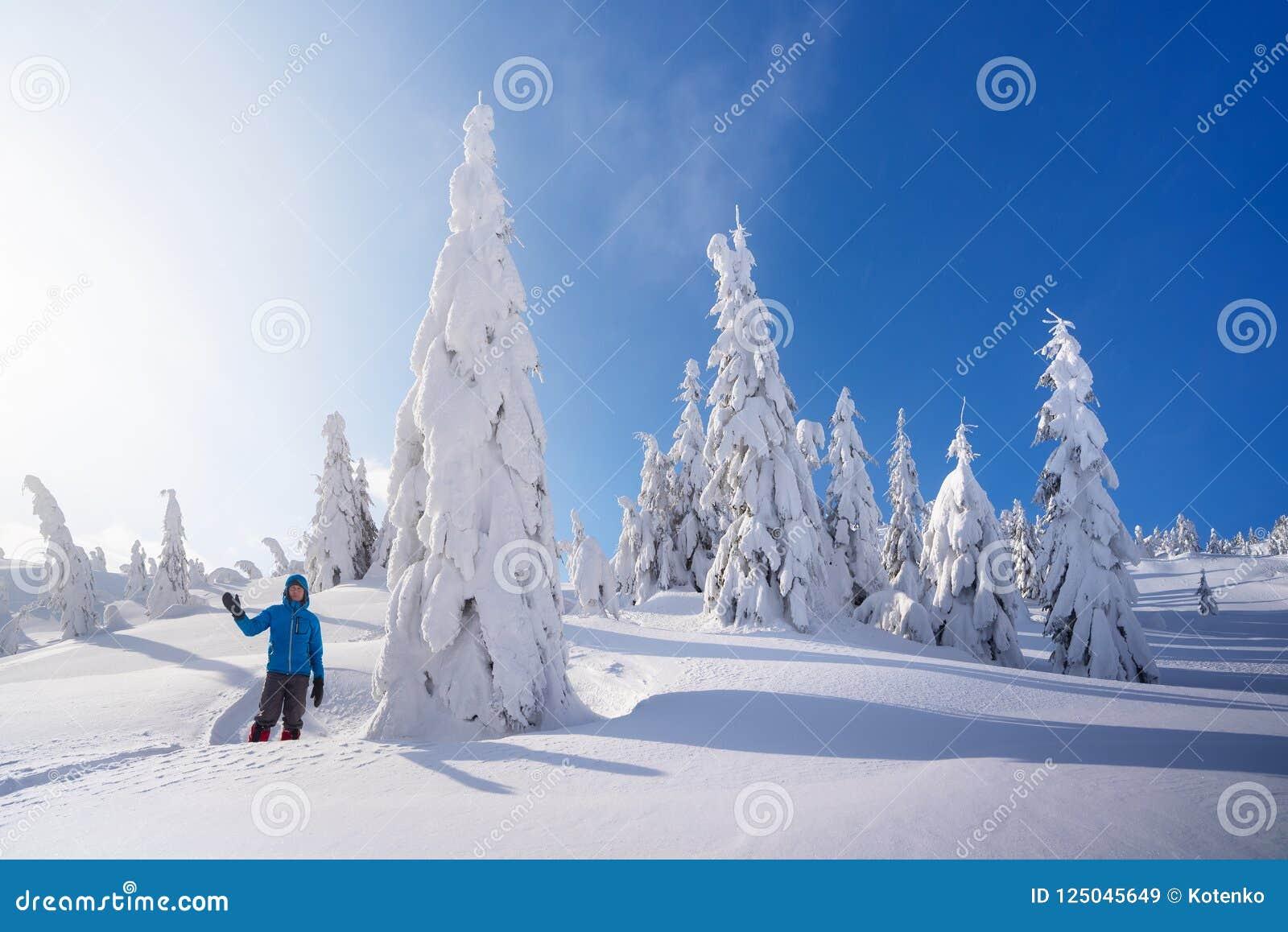 Berg som fotvandrar i vintern