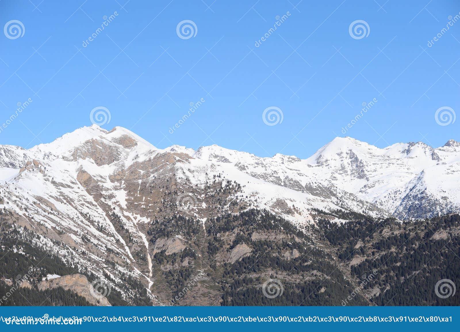 Berg som täckas med snö och som är bevuxna med granen - Furstendömet Andorra, Pyrenees, Europa