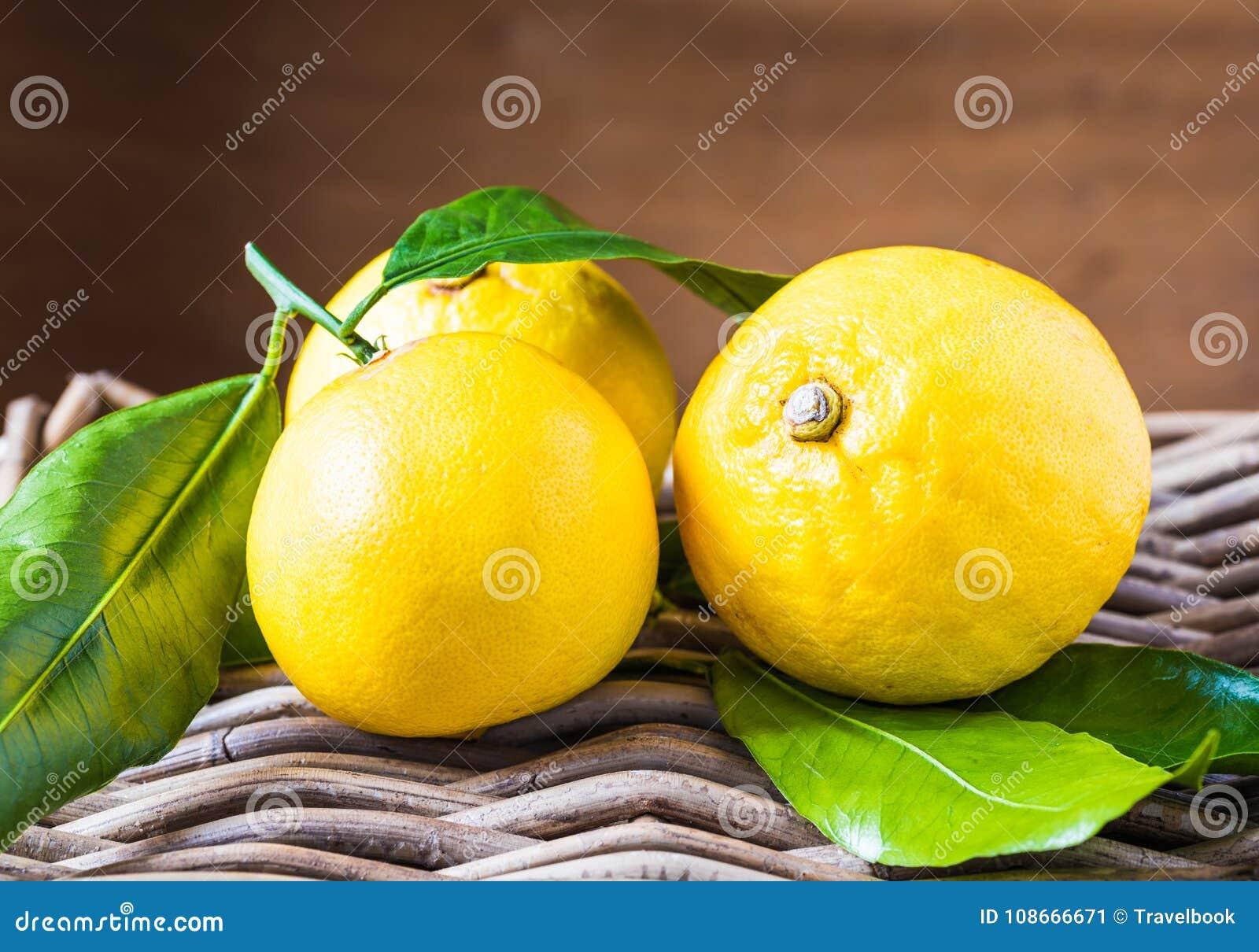 Bergamot citrus fruit from south Italy, Reggio Calabria.