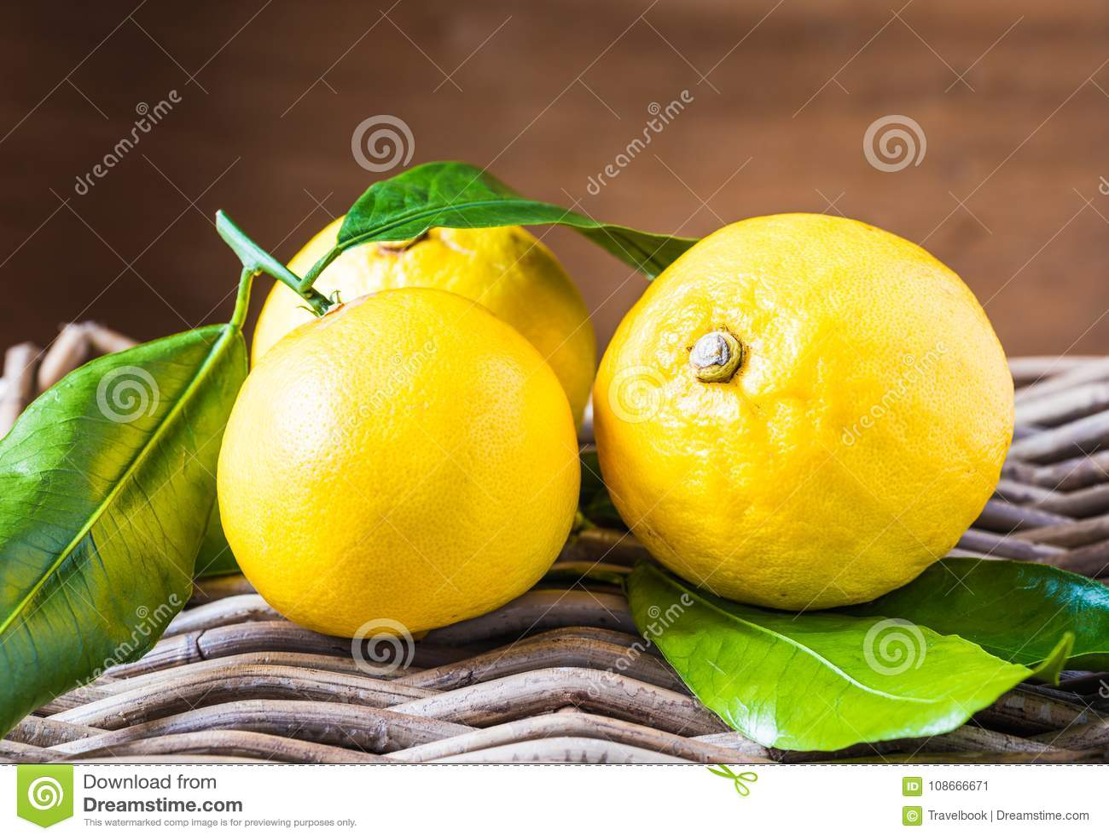 Bergamotcitrusfrukt från södra Italien, Reggio Calabria