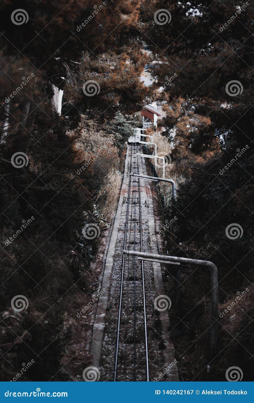 Bergbanaspår på kullen
