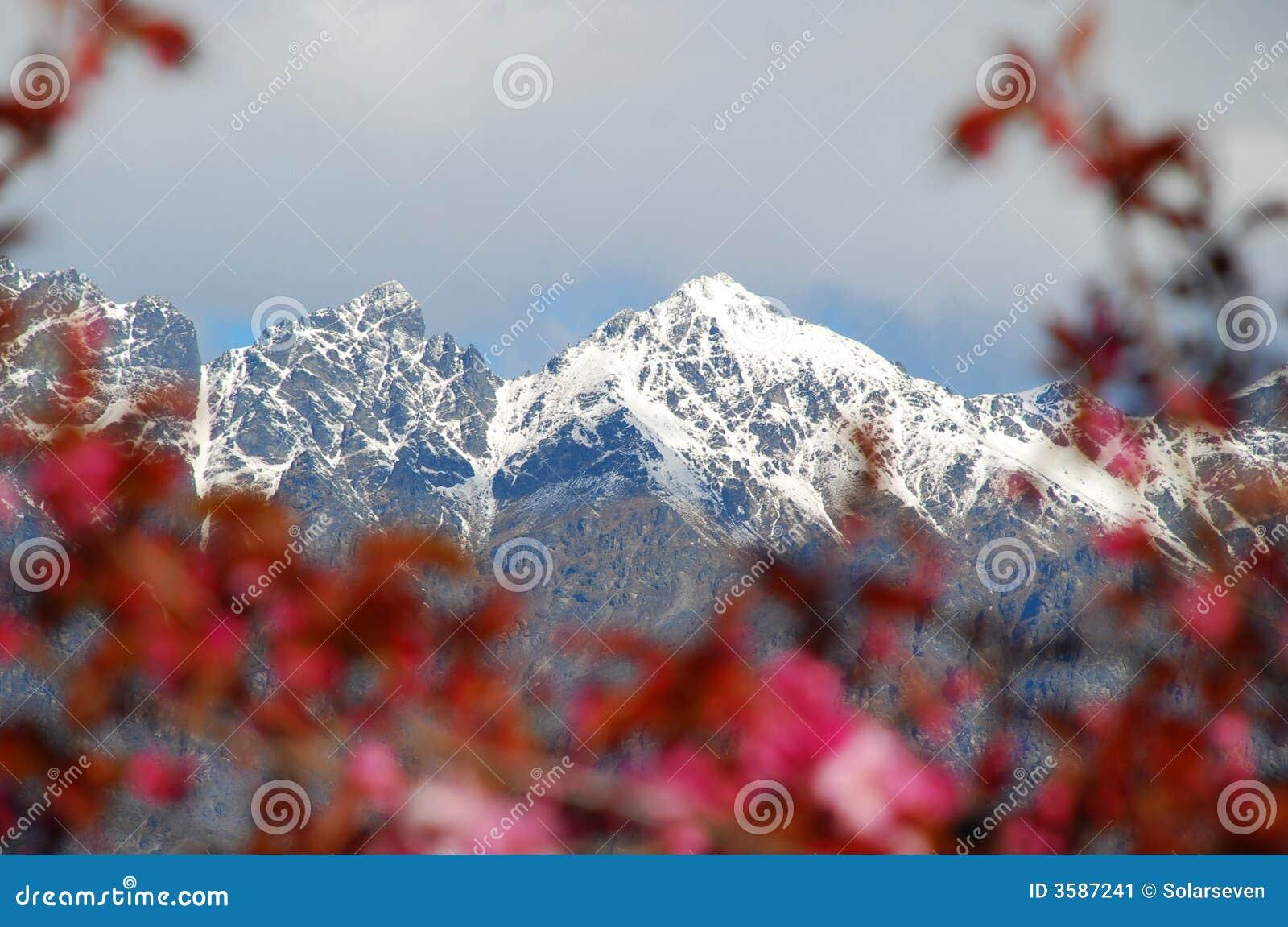 Berge durch Flora