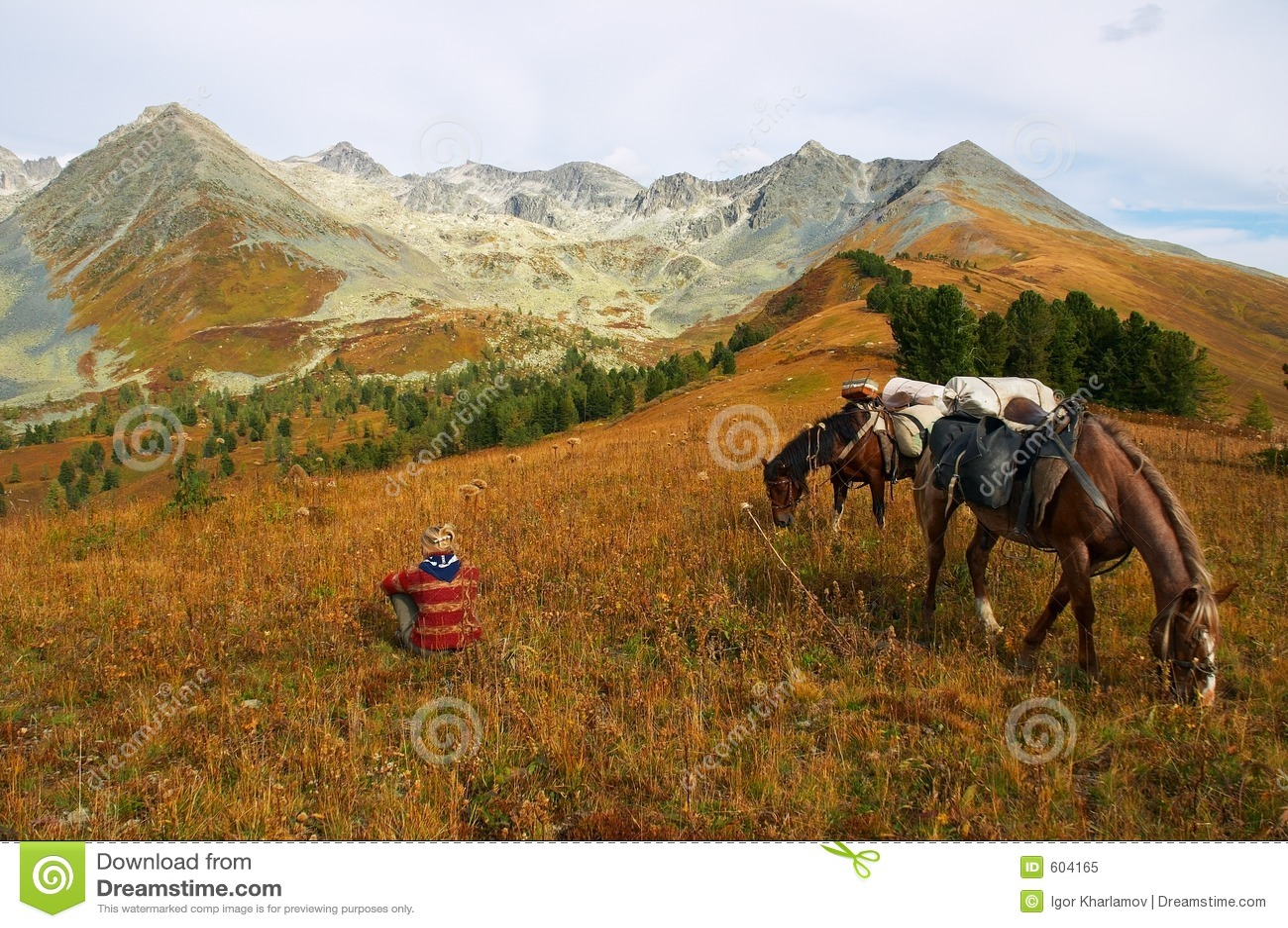Bergen, meisje en twee paarden.